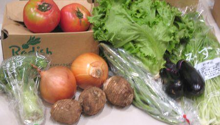 安心・安全・有機・低農薬野菜セット「らでぃっしゅぼーや」